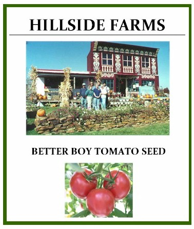Better Boy Tomato Seed